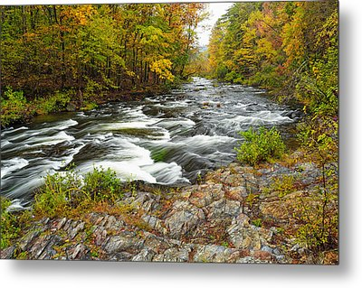 Watching It All Go By  At Beaver's Bend Broken Bow Fall  Foliage Oklahoma Metal Print