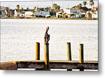 Watching Over The Bay Metal Print by Scott Pellegrin