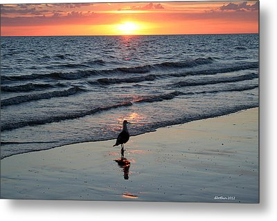 Watching The Sun Rise Metal Print by Dick Botkin