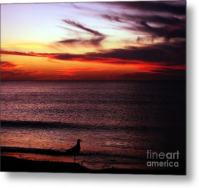 Watching The Sunset Metal Print by Doris Wood