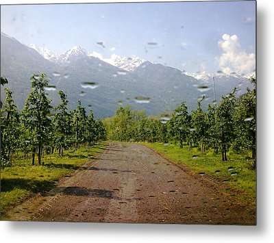 Water And Apple Juice Metal Print by Giuseppe Epifani