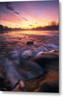Water Claw Metal Print by Davorin Mance