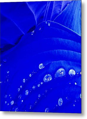 Water Droplets  Metal Print
