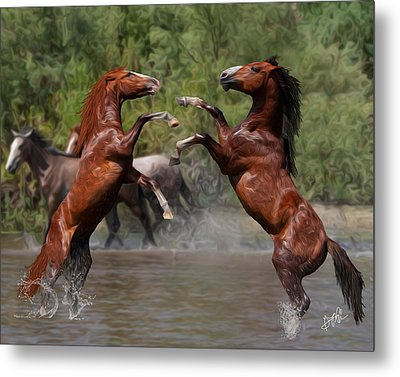 Water Fight Metal Print by Gregory Ambrose