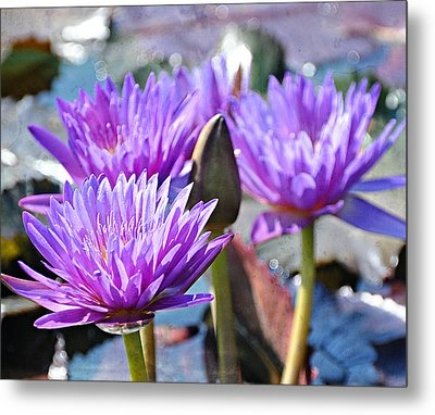Metal Print featuring the photograph Water Flower 1006 by Marty Koch