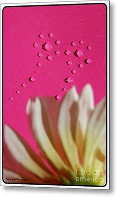 Water Flowers Metal Print by Kip Krause