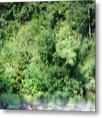 Water Forest Metal Print by Stanislav Killer
