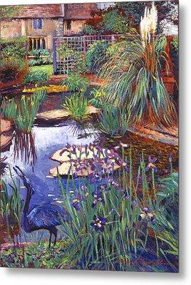 Water Garden Metal Print by David Lloyd Glover