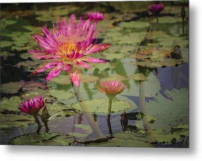 Water Garden Dream Metal Print by Penny Lisowski