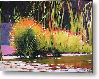 Water Garden Landscape 3 Metal Print by Melody Cleary