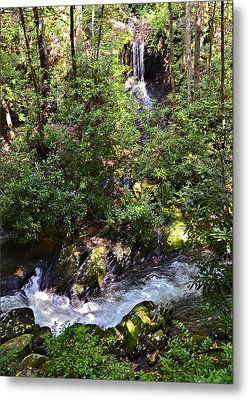 Water In The Forest Metal Print