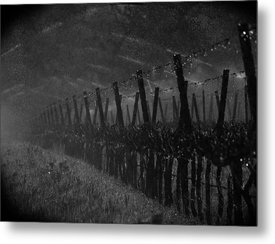 Water Into Wine Metal Print