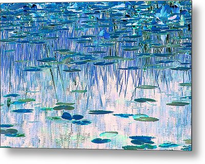 Water Lilies Metal Print by Chris Anderson