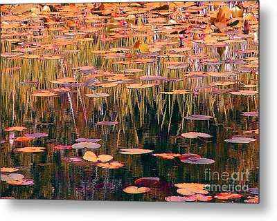 Water Lilies Re Do Metal Print by Chris Anderson