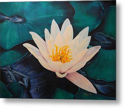 Water Lily Metal Print by Adel Nemeth