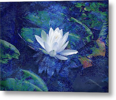 Water Lily Metal Print by Ann Powell