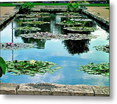 Metal Print featuring the photograph Water Lily Garden by Zafer Gurel