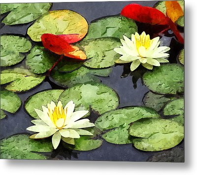 Water Lily Pond In Autumn Metal Print by Susan Savad