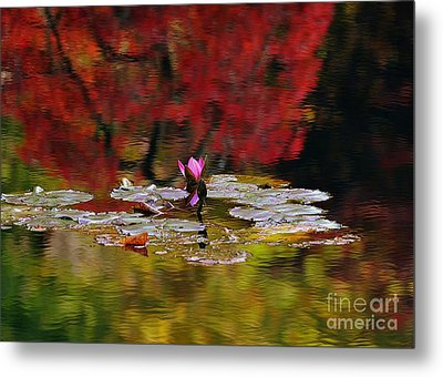 Metal Print featuring the photograph Water Lily Reflection by Lisa L Silva