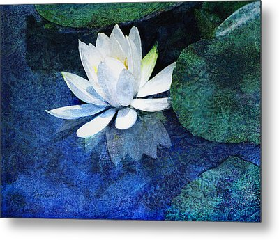Water Lily Two Metal Print by Ann Powell