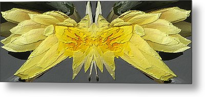 Water Lily Unleashed 4 Metal Print by Tim Allen