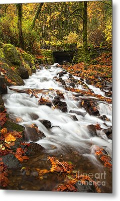Water Under The Bridge Metal Print by Mike  Dawson