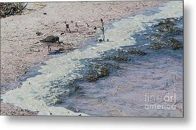 Metal Print featuring the photograph Watercolor Sandpipers by Jeanne Forsythe