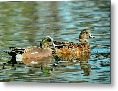 Watercolors In Nature Metal Print by Fraida Gutovich
