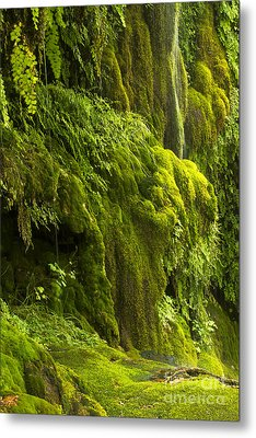 Metal Print featuring the photograph Waterfall In Green by Bryan Keil