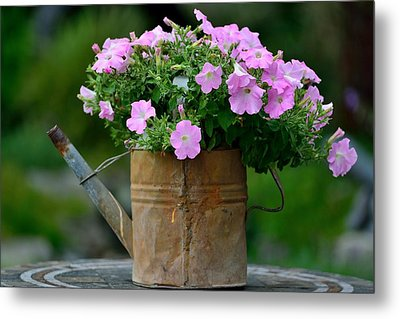 Metal Print featuring the photograph Watering Can And Flowers by Kathy King