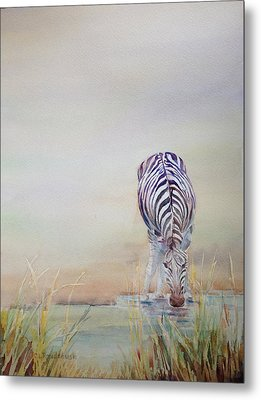 Watering Hole Metal Print by Cynthia Roudebush