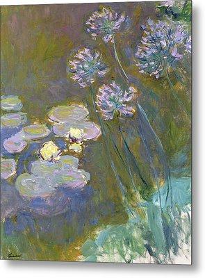 Waterlilies And Agapanthus Metal Print