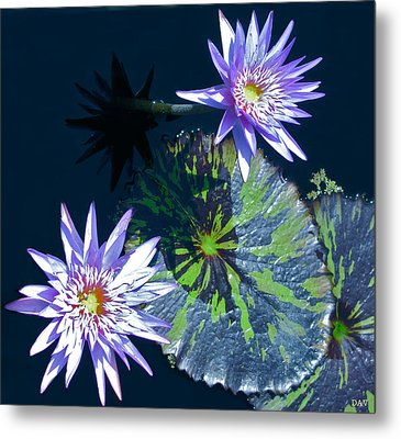 Waterlily And Pads Metal Print by Debra     Vatalaro