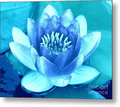 Waterlily Blue 2 Metal Print