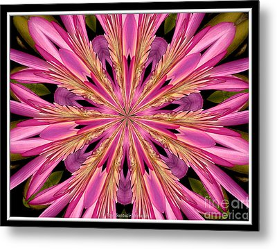 Metal Print featuring the photograph Waterlily Flower Kaleidoscope 4 by Rose Santuci-Sofranko
