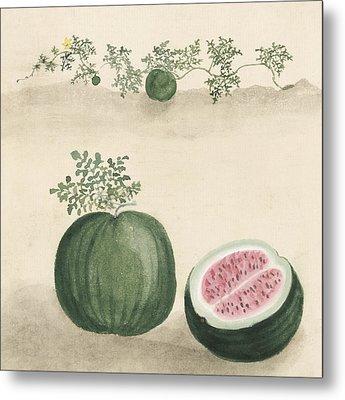 Watermelon Metal Print by Aged Pixel