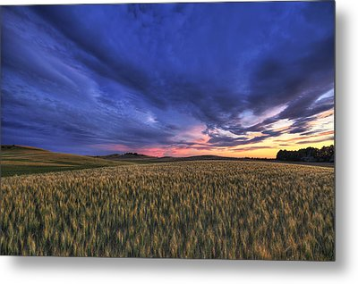 Watermelon Sunset Metal Print by Mark Kiver