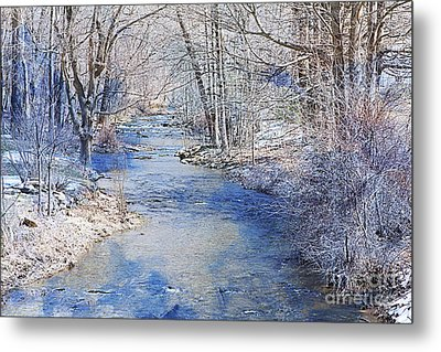 Water's Edge Metal Print by A New Focus Photography