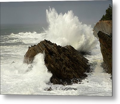 Wave At Shore Acres Metal Print by Bob Christopher
