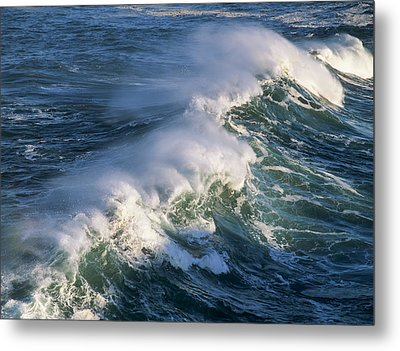 Wave Breaking At Shore Acres State Park Metal Print by Robert L. Potts