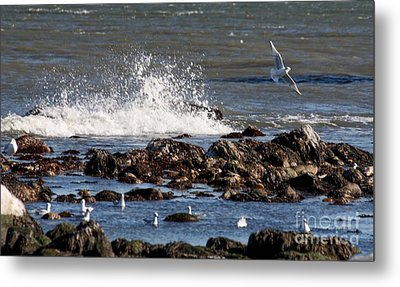 Waves Wind And Whitecaps Metal Print by John Telfer