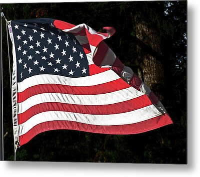 Metal Print featuring the photograph Waving Flag by Ron Roberts