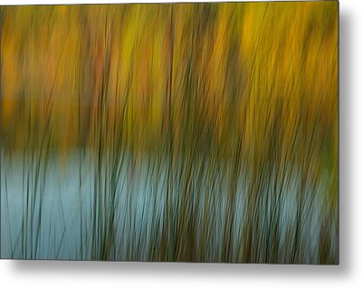 Wavy Metal Print by Randy Pollard