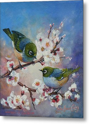 Wax Eyes On Blossom Metal Print by Peter Jean Caley