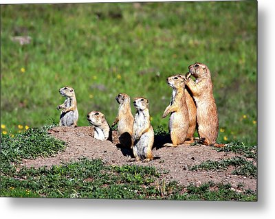 We Are Family Metal Print by Lana Trussell