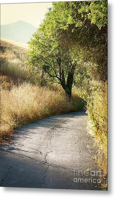 Metal Print featuring the photograph We Will Walk This Path Together by Ellen Cotton