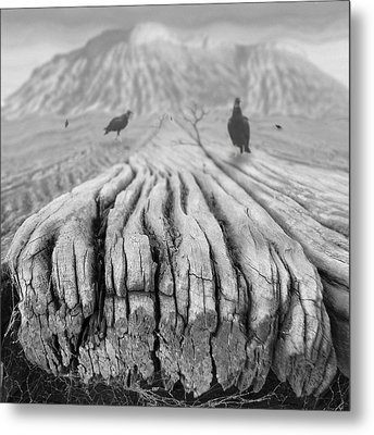 Weathered 3 Metal Print by Mike McGlothlen