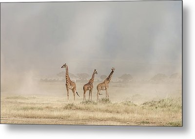 Weathering The Amboseli Dust Devils Metal Print
