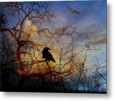 Web Metal Print by Randal Bruck