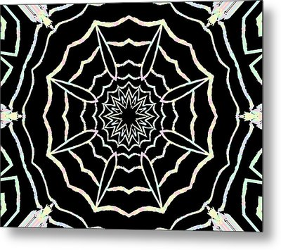 Webbing Life Metal Print by Erica  Darknell
